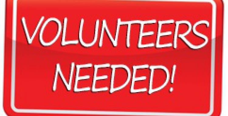 Volunteer and Mystery Reader Sign-ups