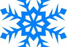 <h1>Snowflake</h1> Photo