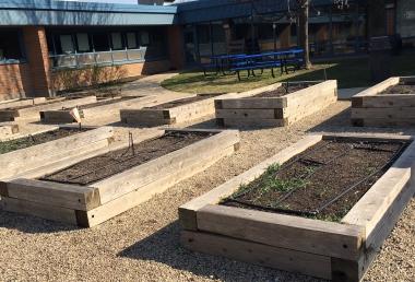 Third Grade Planting Season