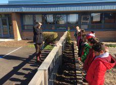 Third Grade Tulip Planting Photo